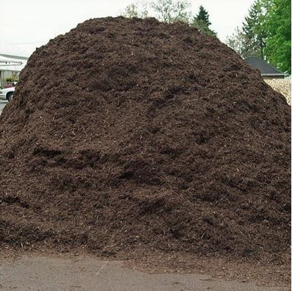 Saddle-Brown Tree Mulch